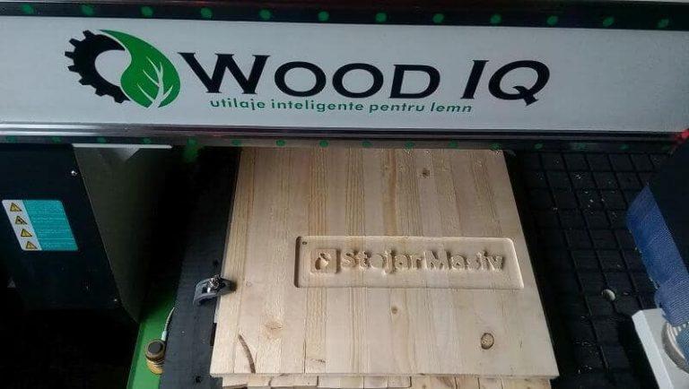 WoodIq si StejarMasiv